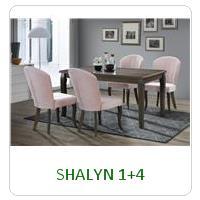 SHALYN 1+4